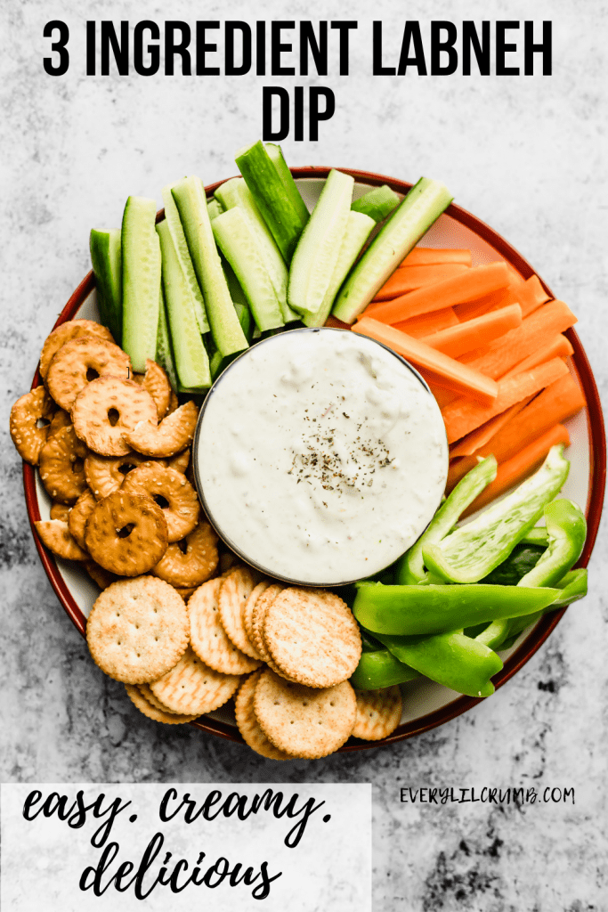 Plate of cut up veggies and crackers with 3 ingredient labneh dip in the middle