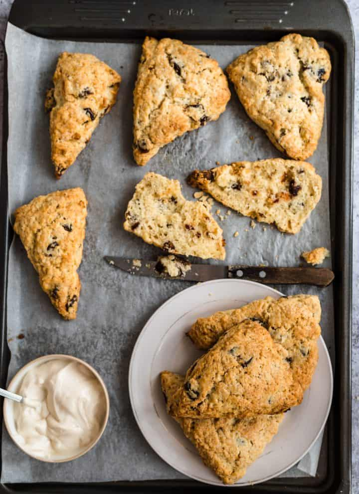 Tray of baked date scones on parchment paper with cream